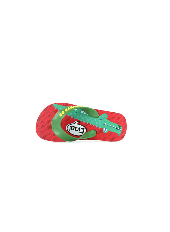 Flip Flops - Alligator