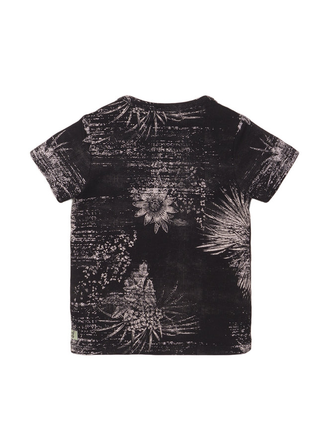Koko Noko - Boys T-shirt SS - Cactus Dark Grey SS21