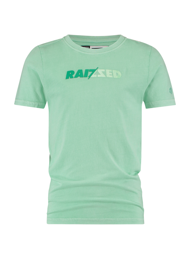 Raizzed - Humberto - Pastel Leaf