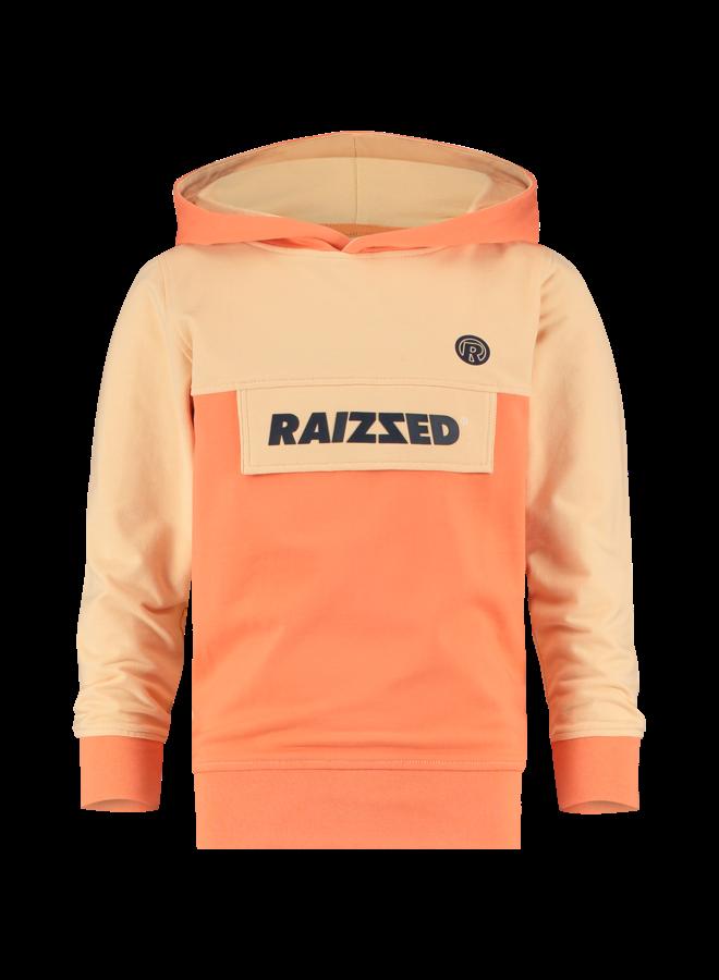 Raizzed - Norwich - Pastel Sinas