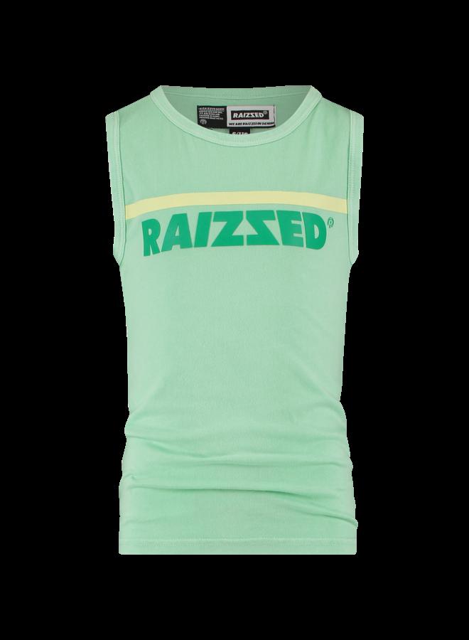 Raizzed - Hidalgo - Pastel Leaf