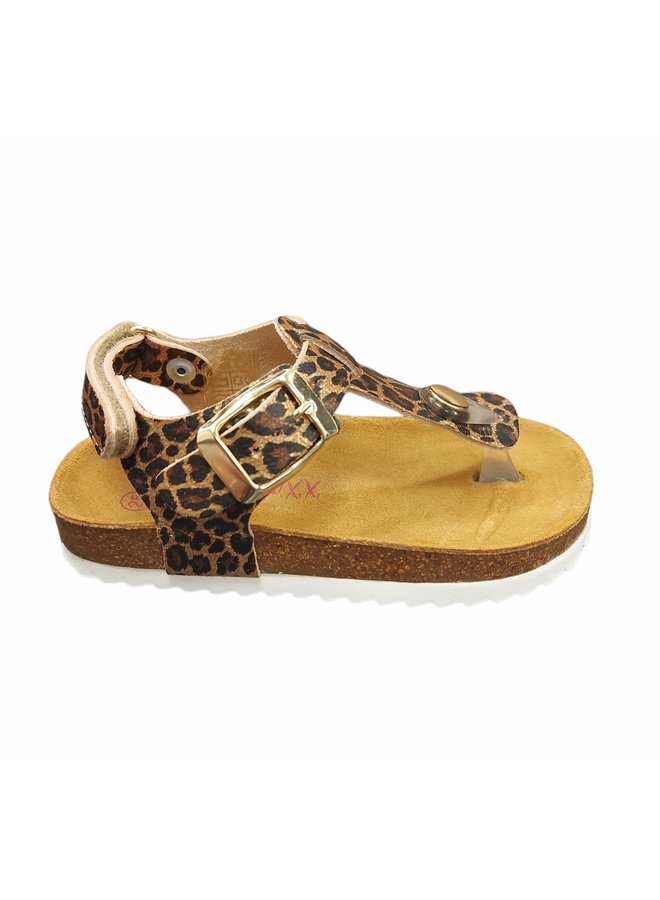 Girls - Sandal Leopard - Gold Fantasy