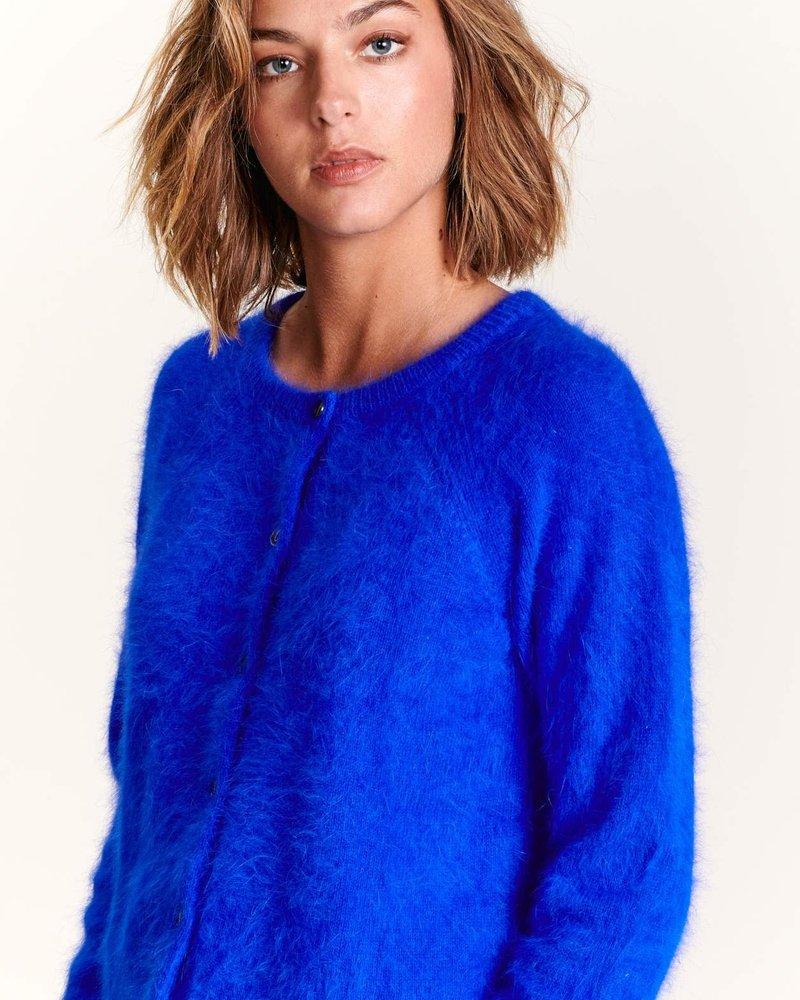 Bellerose datair lazuli