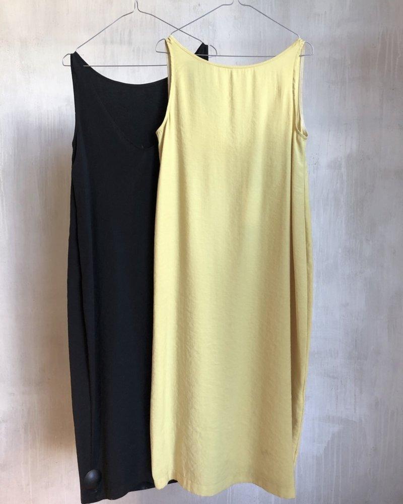 Momoni cataria yellow