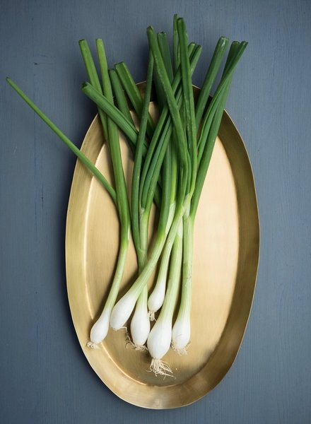 Fog linen brass tray oval