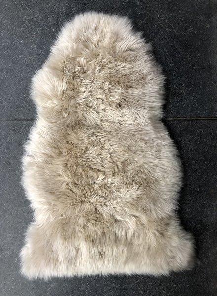 sheep long wool