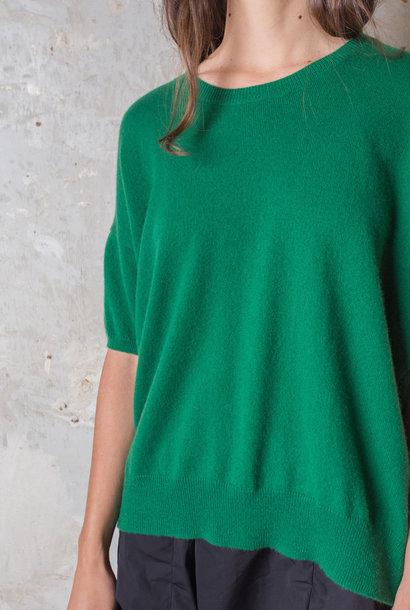 half sleeve green