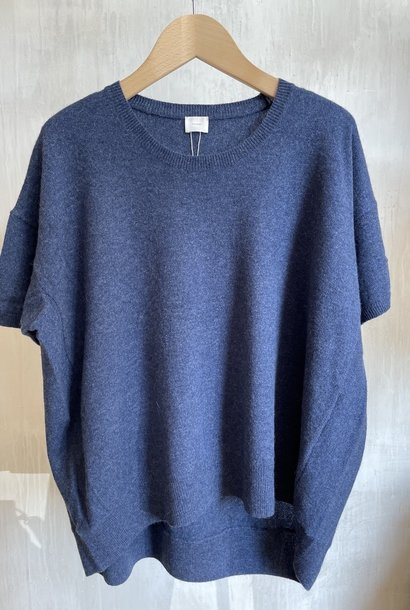 half sleeve blue