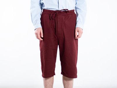 7d 7d Shorts / Twenty-Two / Burgundy
