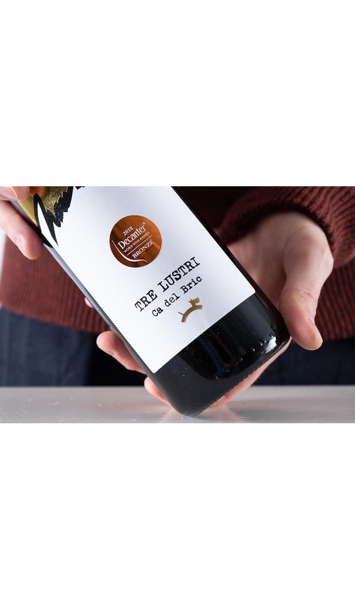 Ca del Bric Wine / TreLustri