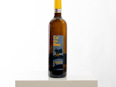 Ca del Bric Wine / Gavi