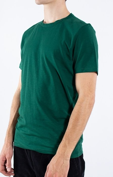 Homecore Homecore T-Shirt / Rodger / Groen