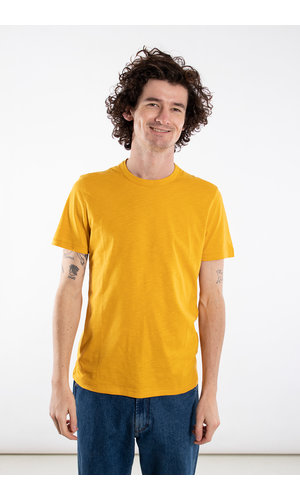 Homecore Homecore T-shirt / Rodger / Geel