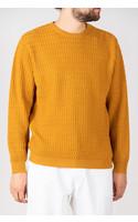 G.R.P. Sweater / SFTEC60 / Ochre