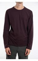 7d T-Shirt / Fifty -One / Pruim