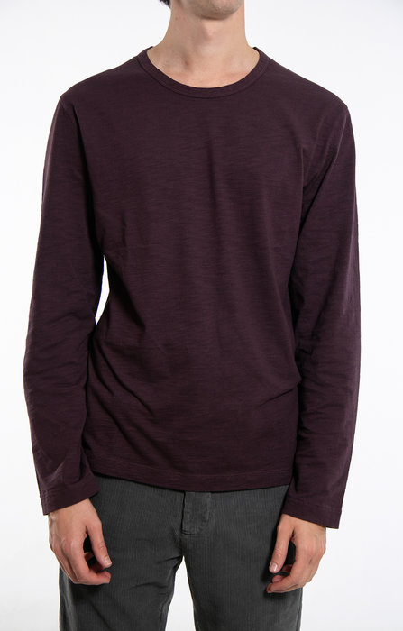 7d 7d T-Shirt / Fifty -One / Pruim