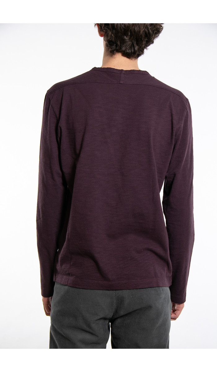 7d 7d T-Shirt / Fifty -One / Plum