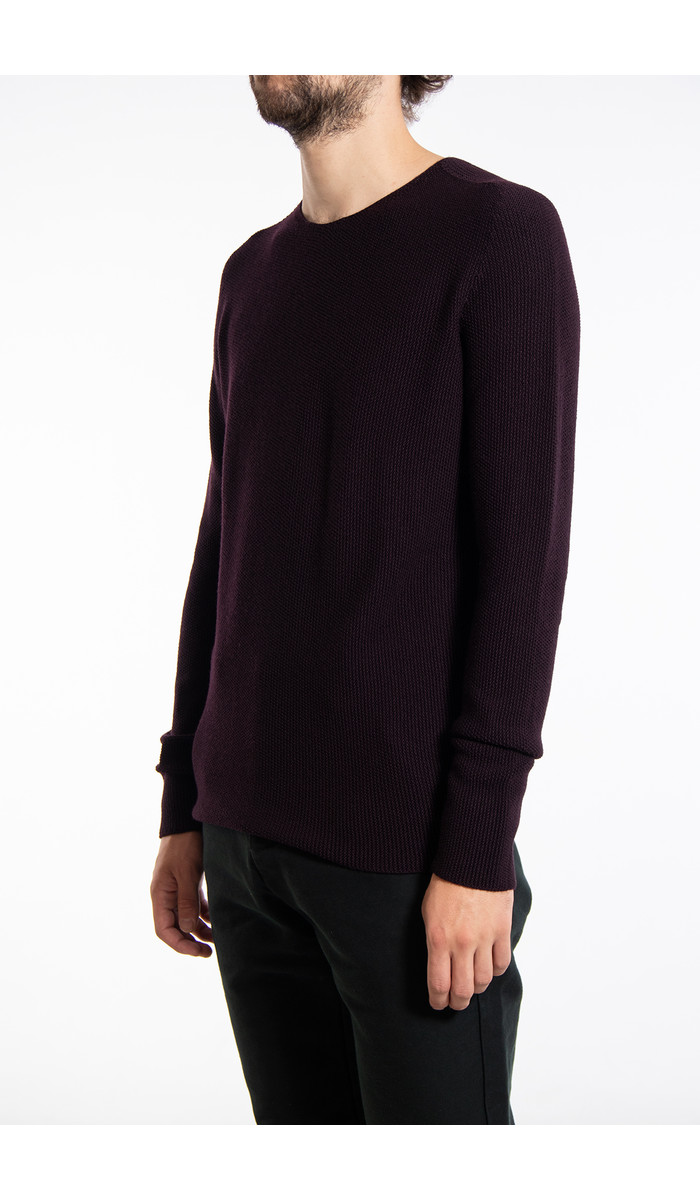 Hannes Roether Hannes Roether Sweater / Nickel / Eggplant