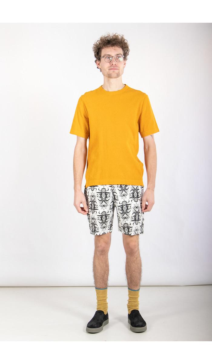 Uniforms for the Dedicated Short / Yum Yum / White