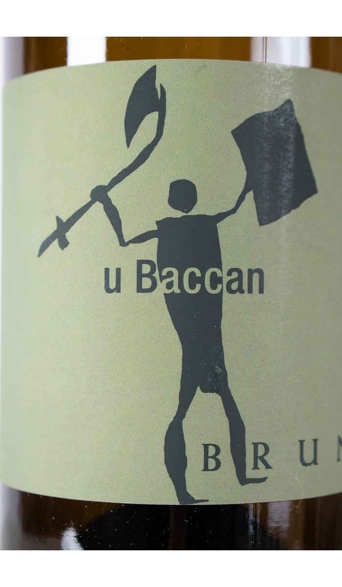 Bruna Wine / U Baccan 2018