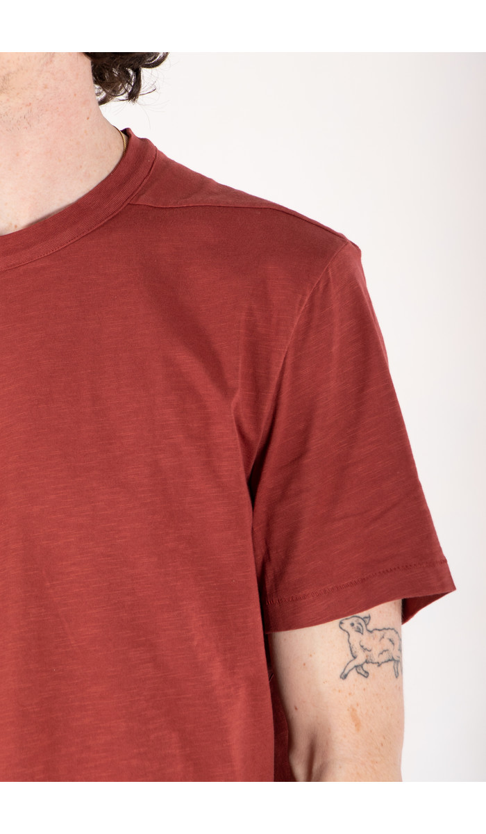 Homecore Homecore T-Shirt / Rodger Bio / Red Brick