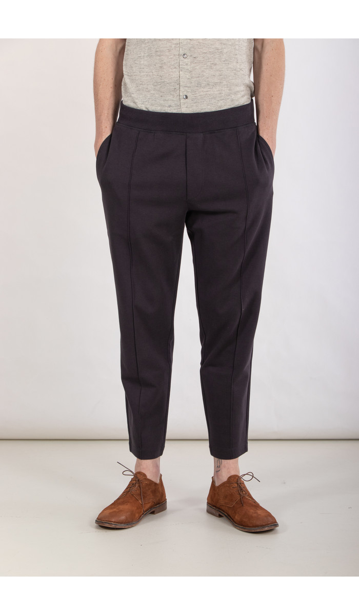 Tiger of Sweden Tiger of Sweden Trousers / Syon / Navy