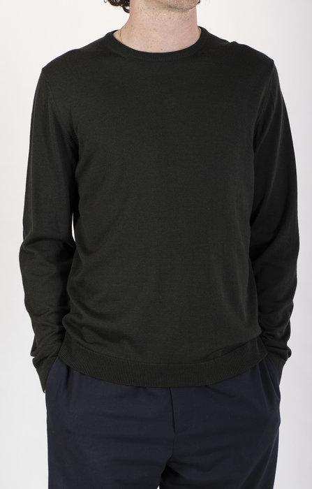 Roberto Collina Roberto Collina Sweater / RF01001 / Loden Green