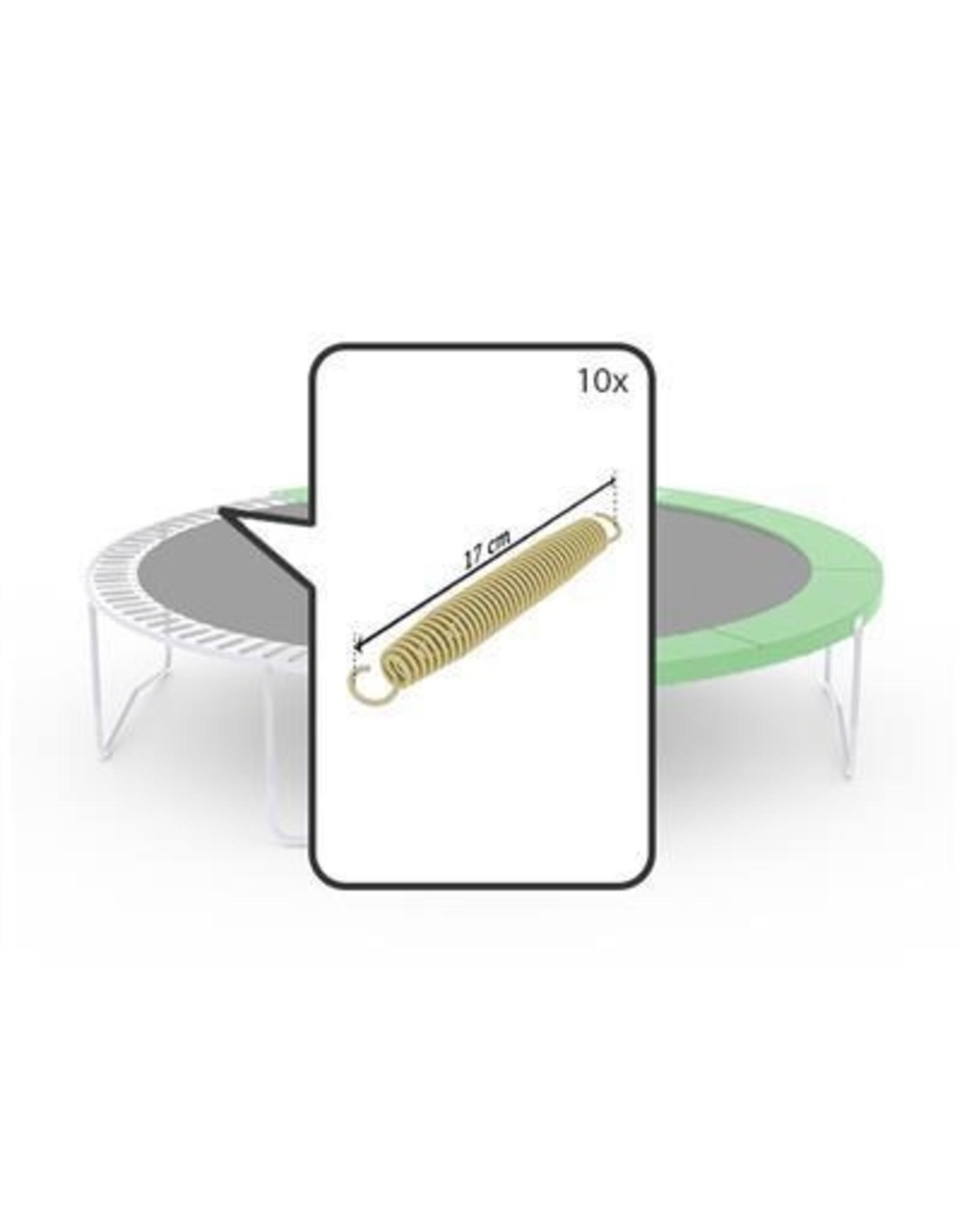 BERG BERG Favorit - Goldspring Basic (10x)