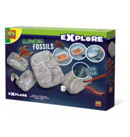Glowing fossils