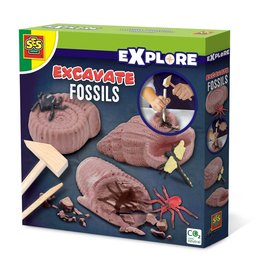SES Creative Excavate fossils