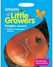 Unwins Little Growers - Pumpkin