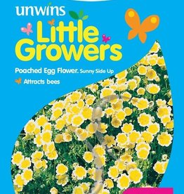Unwins Little Growers - Poached Egg Flower