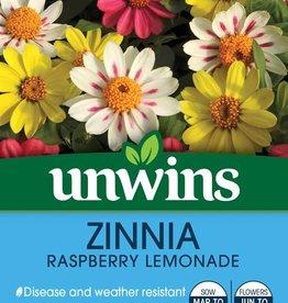 Unwins Zinnia - Raspberry Lemonade