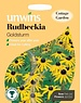 Unwins Rudbeckia - Goldstrum