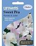 Unwins Sweet Pea - Romeo & Juilet