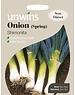Unwins Onion (Spring) - Shimonita