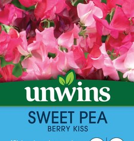 Unwins Sweet Pea - Berry Kiss