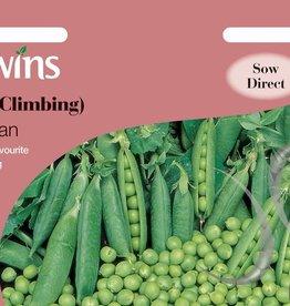 Unwins Pea (Climbing) - Alderman