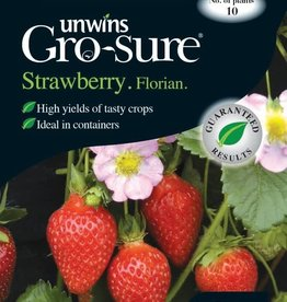 Unwins Strawberry - Florian