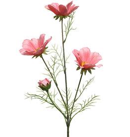 KaemingkS9 Coreopsis Pink