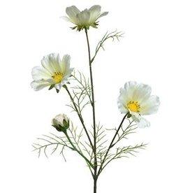 KaemingkS9 Coreopsis White
