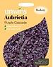Unwins Aubrieta Purple cascade