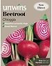 Unwins Beetroot Chioggia