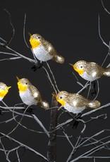 Snowtime Acrylic 5 Robin Lights