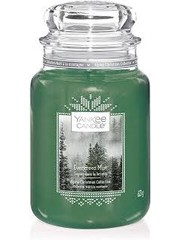 Yankee Evergreen Mist Large Jar