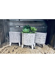 Planter On Legs, Spots and Stripes