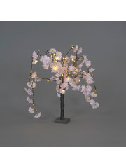 Snowtime Cherry Blossom Tree Pale Pink