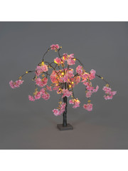 Snowtime Cherry Blossom Tree Dark Pink