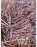 Tinsel Garland Pink (marble pink) 10x270cm