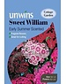 Unwins Sweet William - Early Summer Scented